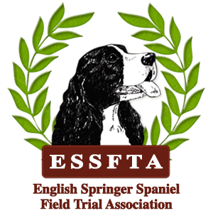 A Short History of English Springer Spaniels - ESSFTA - English